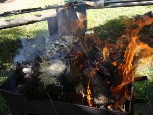Burning wool
